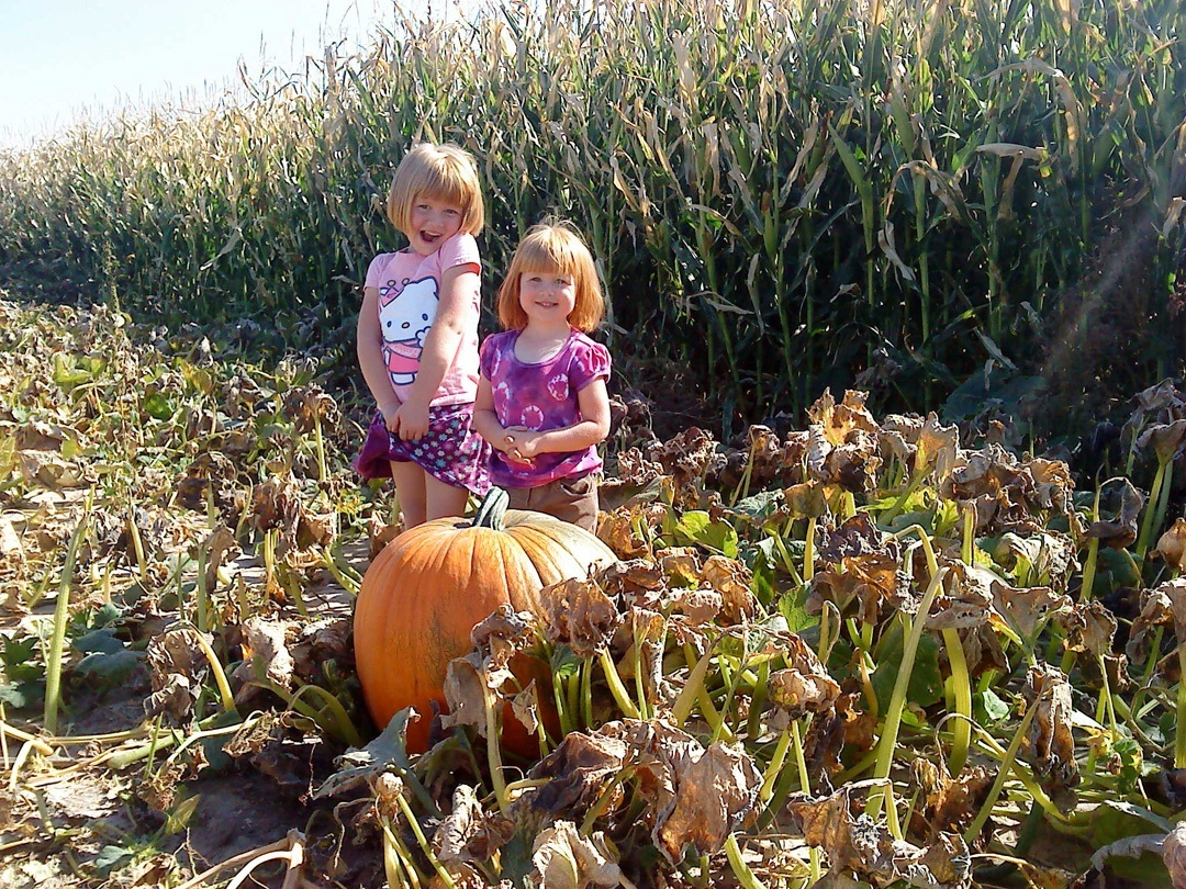 girls in pumpkin patch.jpg
